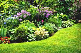 perennial garden layout ideas flower design bed planner flowers