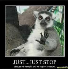Exles Of Memes - 20 best grammar memes images on pinterest english grammar