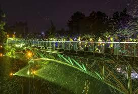 Zoo Lights Woodland Park End Of Summer Bubble Light Spectacular U2013 Zoonooz