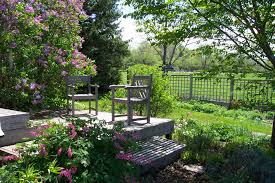 Landscaping Ideas For The Backyard by Landscaping And Garden Center