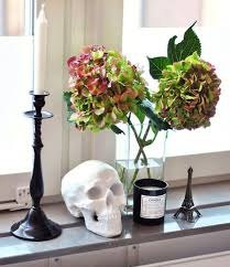 skull decor skull home decor
