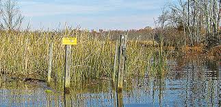 Floating Duck Blind For Sale Restrictive Duck Blind Laws Wildfowl