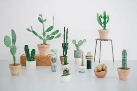 Indoor Planters by Choosing The Perfect Indoor Planters Interior Tips