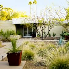 desert landscaping ideas from a phoenix front yard sunset