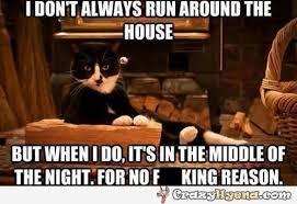 Sitting Meme - running around the house