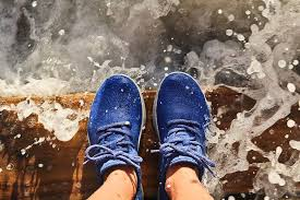 What Are The Most Comfortable Shoes Travel Gear Review Allbirds The Most Comfortable Shoes In The