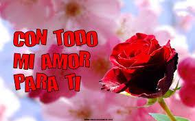 imagenes de amor con rosas animadas 60 imágenes con flores y mensajes con flores para whatsapp