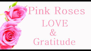 Meaning Of Pink Roses Flowers - meaning of roses florist singapore youtube
