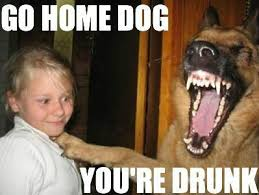 Pictures Of Funny Memes - really funny memes go home you re drunk