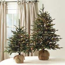 suzanne kasler frasier fir tabletop tree ballard designs