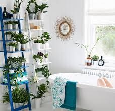 indoor garden ideas extraordinary bathroom plant indoor garden ideas delightful