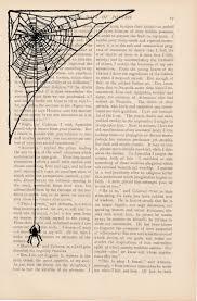 best 25 spider web drawing ideas on pinterest black widow