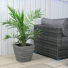 planters extra large plastic tree pots indoor planter planters