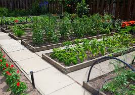 raised bed vegetable gardening easier gardening ideas front