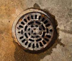 Water Coming Up From Basement Drain by Basement Floor Drain Backup Drain Backup Basement Flooded