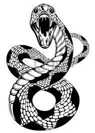an illustration of a king cobra snake in black and white royalty