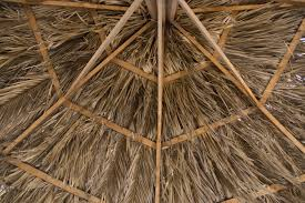 Mexican Thatch Roofing by Safari Thatch Blog