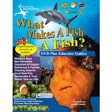 what makes a fish dvd for clownfish