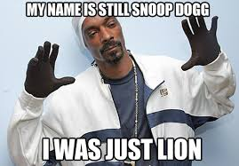 Snoop Meme - image 367019 snoop lion know your meme