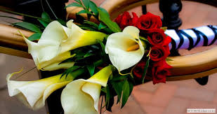 Flower Delivery Chicago Andrew Flower Delivery Tulsa Ok Same Day Flower Delivery