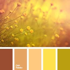 yellow brown orange brown color color palette ideas