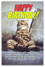 birthday wishes funny birthday messages