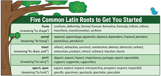 what is the latin root meaning light teach latin roots with word trees free download and video