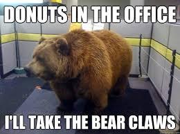 Bear Memes - office bear memes quickmeme