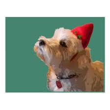 westie dog christmas cards invitations greeting u0026 photo cards