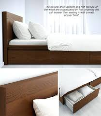 Daybed With Pull Out Bed Great Pull Out Bed Singapore Designing Home Daybed With Trundle