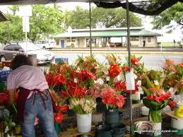 Hilo Flowers - travels with carole things to do hilo farmer u0027s market hilo big