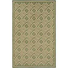 Green Outdoor Rug Green 4 X 6 Outdoor Rugs Rugs The Home Depot