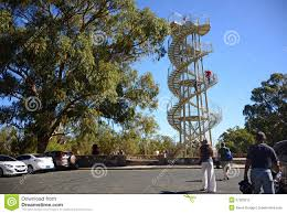 Kings Park Botanic Garden by Dna Tower Sculpture In Perth Stock Photo Image 57263212