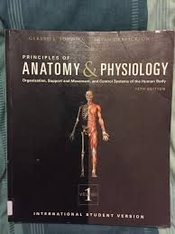 Principles Of Anatomy And Physiology Ebook Anatomy U0026 Physiology Textbook In Bournemouth Dorset Gumtree