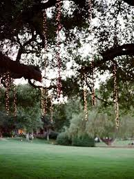 Wedding Trees Outdoor Wedding String Lights Buying Guide For Wedding