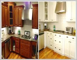 Modernizing Oak Kitchen Cabinets Stunning Updating Oak Kitchen Cabinets Without Painting 1 On Other