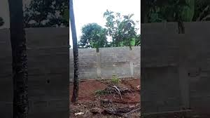 land for sale by owner cap haitien haiti youtube