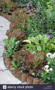 wooden edging with ornamental vegetables in border stock photo