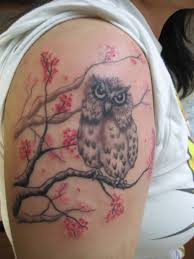 simple tree branch with amazing owl on shoulder golfian com