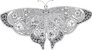 hd wallpapers butterfly coloring pages print