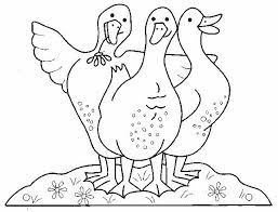 123 coloring pages 312 best patos images on pinterest animals ducks and montessori