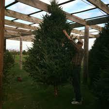 keris tree farm u0026 christmas shop home facebook