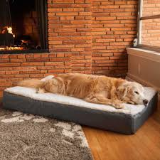 Sofa Bed For Dogs by Super Orthopedic Lounge Dog Bed W Cream Sherpa Snoozer