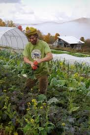 buy local grow local independent we stand independent we stand consumer demand analysis of vermont u0027s food system the plan