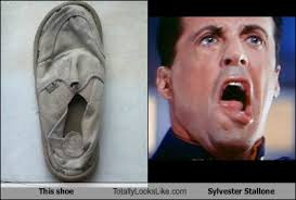Stallone Meme - this shoe totally looks like sylvester stallone totally looks like