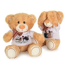 teddy bears teddy bears photobook united states