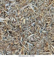 wood chip mulch stock photos u0026 wood chip mulch stock images alamy