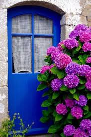 Purple Hydrangea 17 Dreamy Hydrangea Gardens That Are Giving Us Major Inspiration