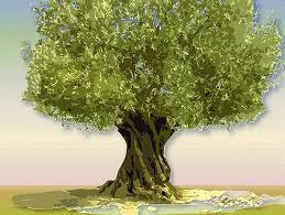 animals for animated tree tree of clipart library clip
