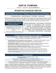 Resume Samples For Professionals by It Director Sample Resume It Resume Writer Technical Resume